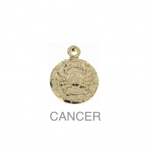 im-Breloque-astrologique-signe-du-zodiaque-Cancer-13-mm-Plaque-Or-3-microns-x1