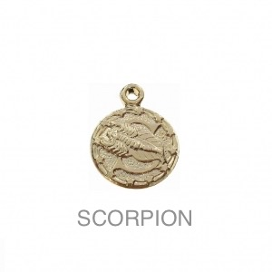 im-Breloque-astrologique-signe-du-zodiaque-Scorpion-13-mm-Plaque-Or-3-microns-x1